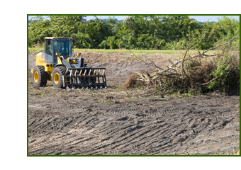 Brush and Land Clearing
