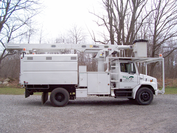 Bucket Truck for Tree Removal